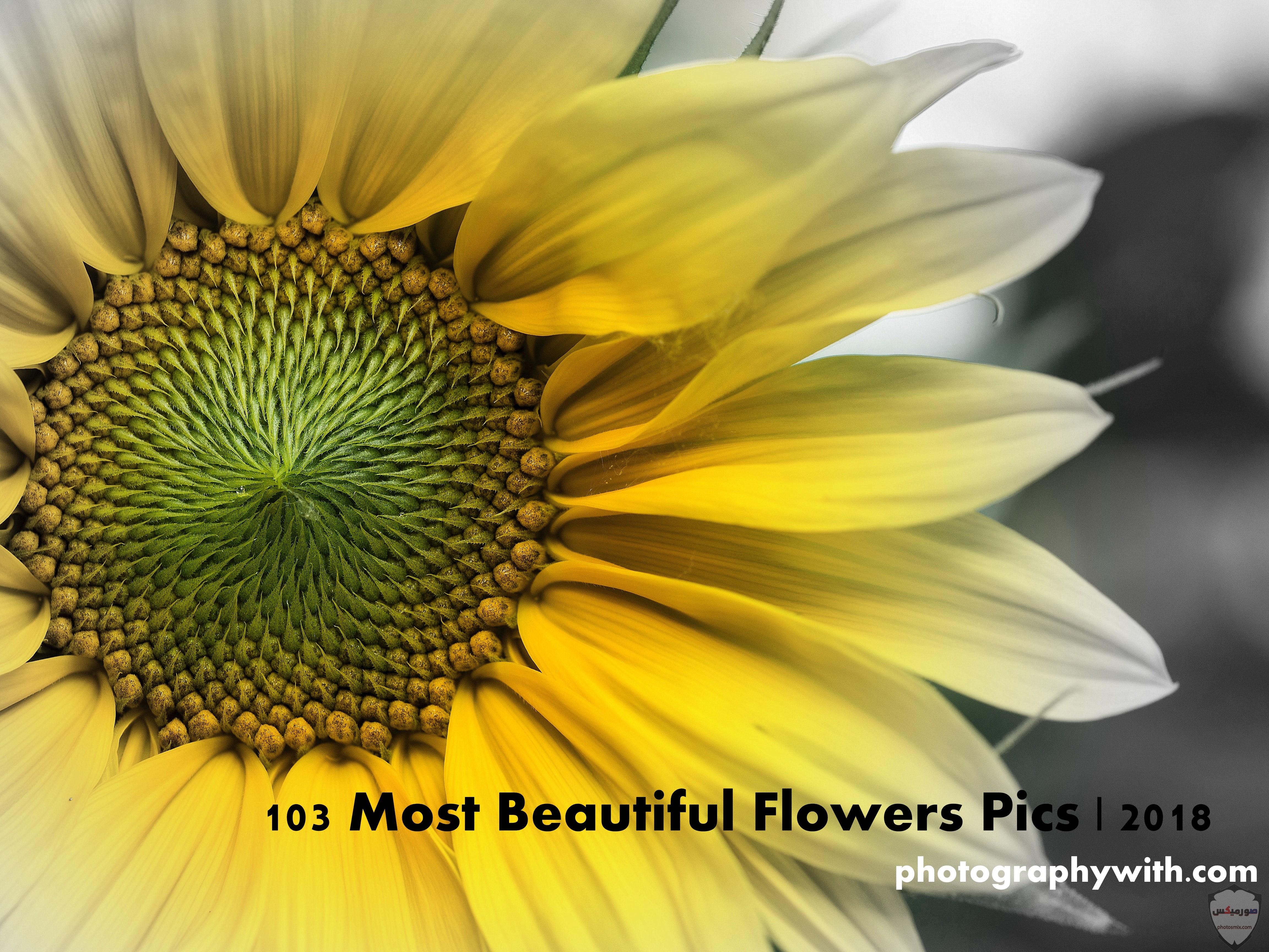 اجمل صور صور جميلة صور جميلة مكتوب عليها اجمل صور خلفيات 32