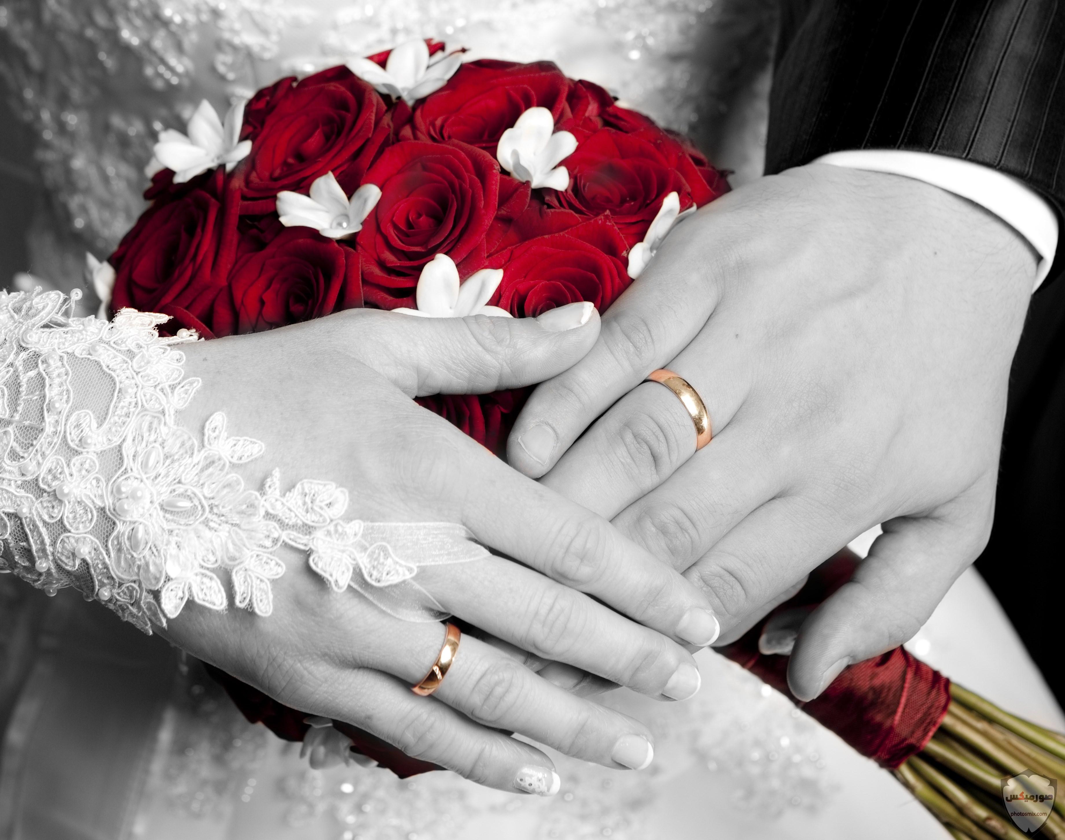 صورى انا وزوجى 2020 صور حب عن الزوج اجمل العبارات عن الزوج وخطيبى 2021 19