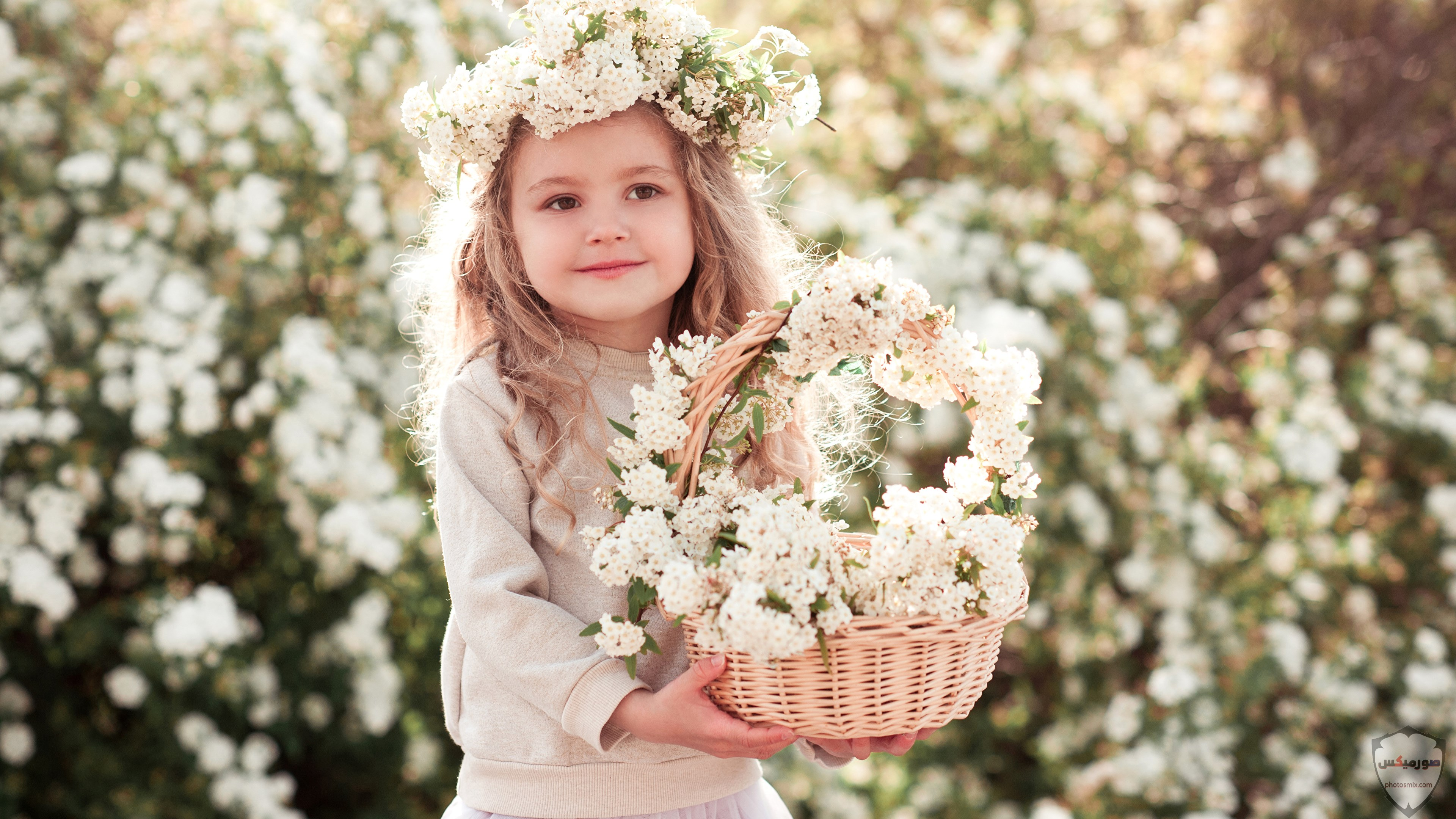 صور جميلة للغاية خلفيات جميلة تنزيل اجمل الصور والخلفيات 16