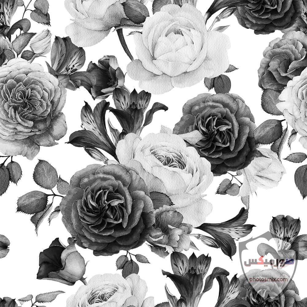 WP015 White Rose Wallpaper