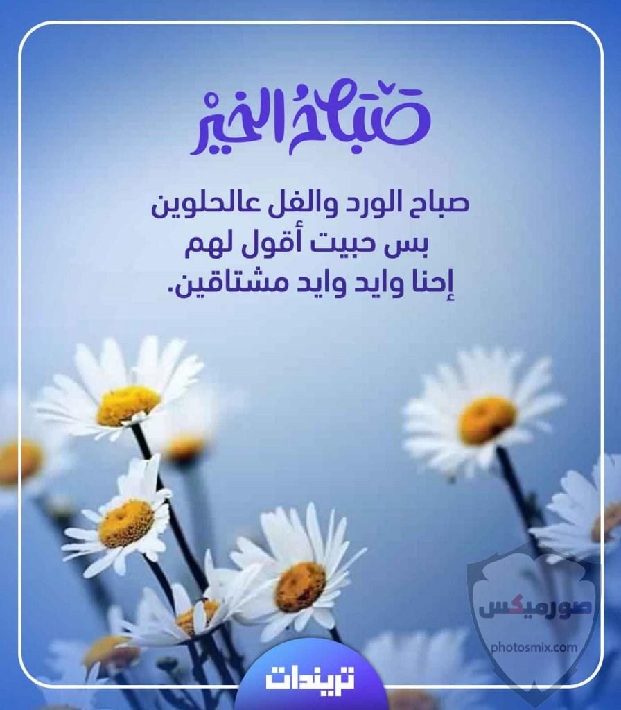 جمل صور صباح الخير و مساء الخير 10