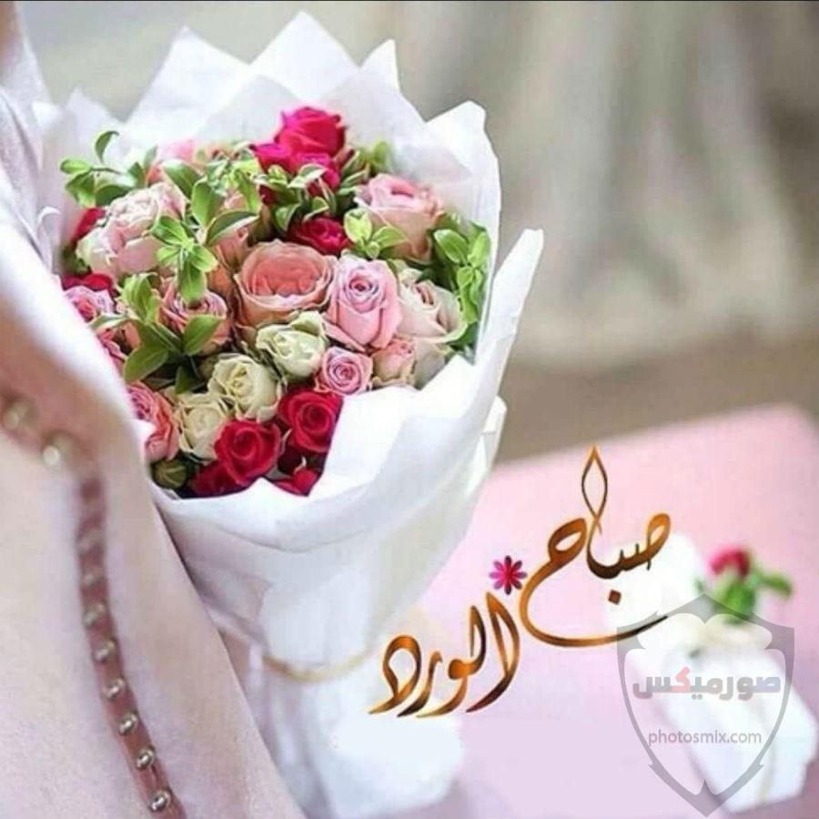 جمل صور صباح الخير و مساء الخير 12