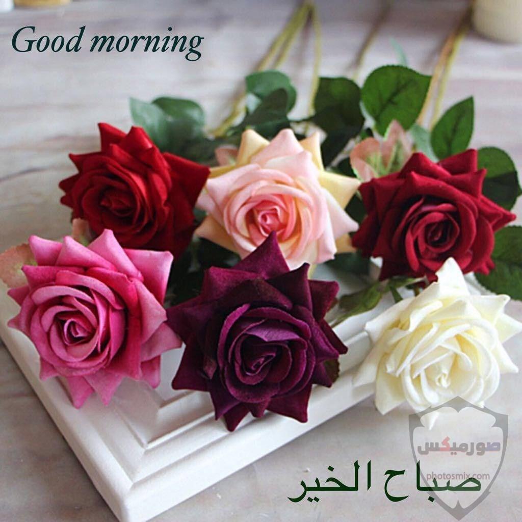 جمل صور صباح الخير و مساء الخير 7