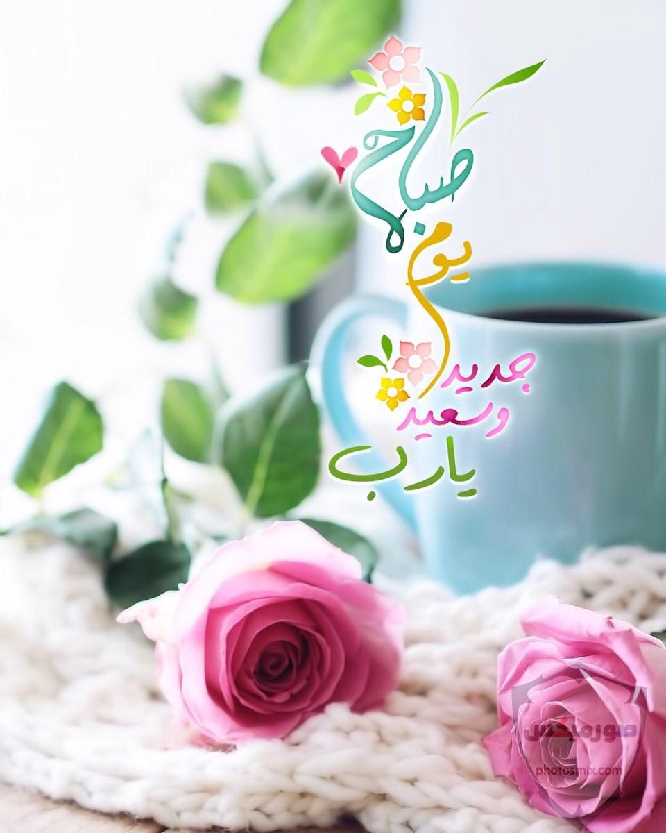 جمل صور صباح الخير و مساء الخير 8
