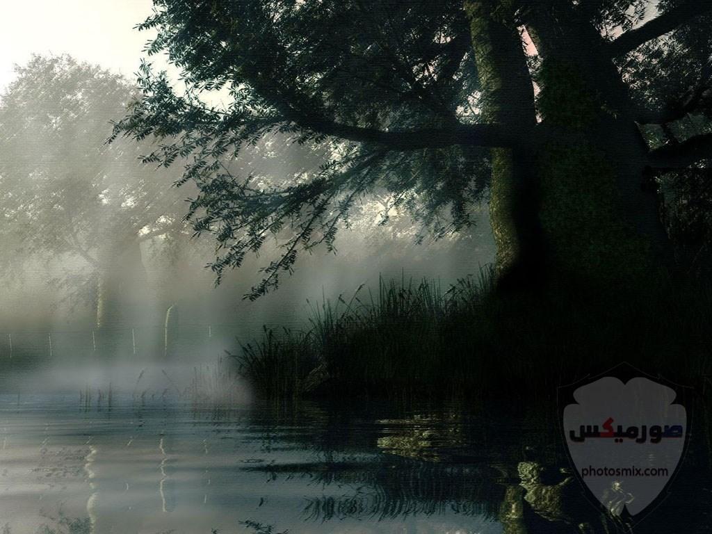 خلفيات مطر 2020 صور فصل الشتاء Beautiful of Rain 8