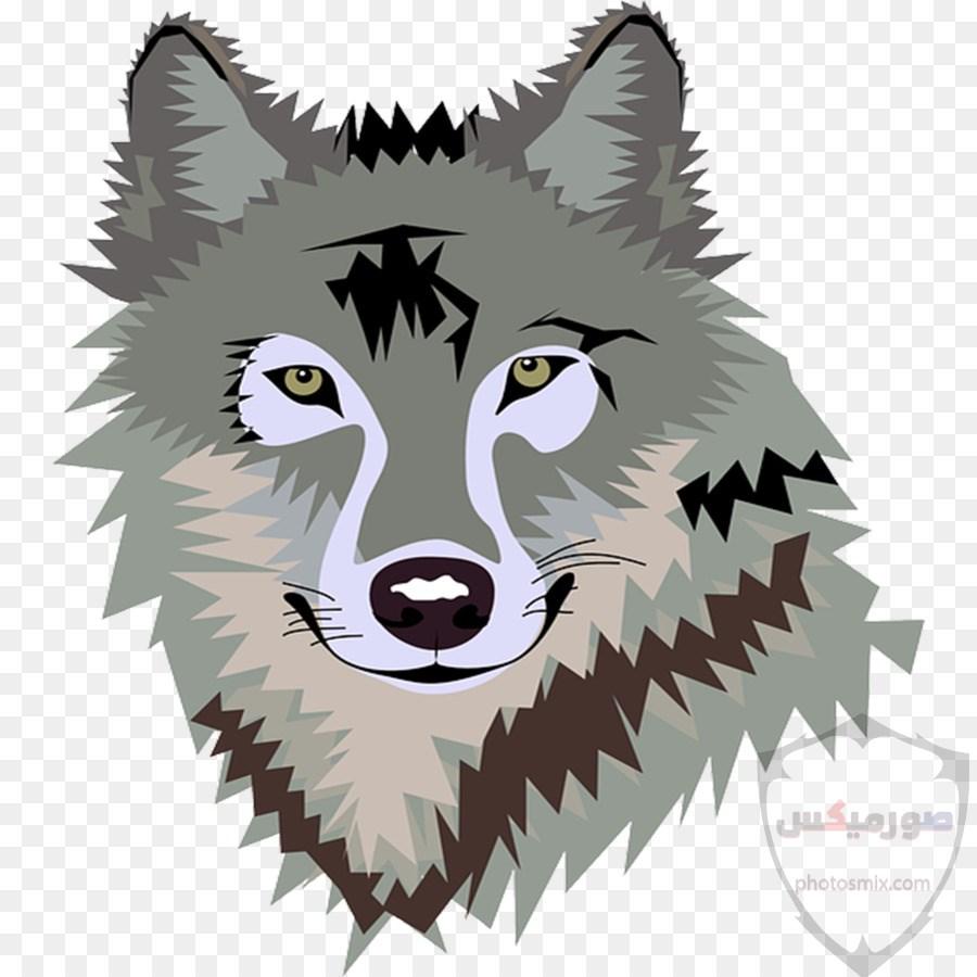 خلفيات وصور ذئاب جميلة Wolves 10