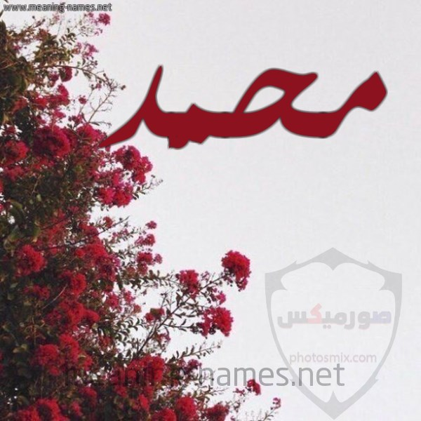 صور اسم محمد خلفيات ورمزيات Mohamed 10