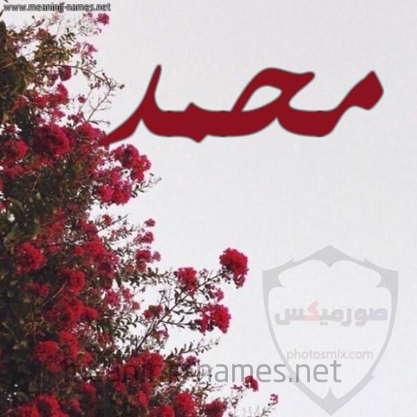 صور اسم محمد خلفيات ورمزيات Mohamed 11