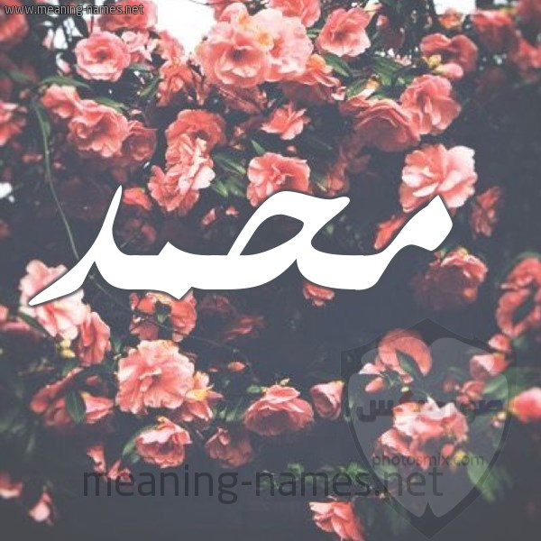 صور اسم محمد خلفيات ورمزيات Mohamed 8