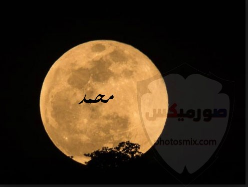 صور اسم محمد 2020 رمزيات اسم محمد خلفيات اسم محمد صور 5