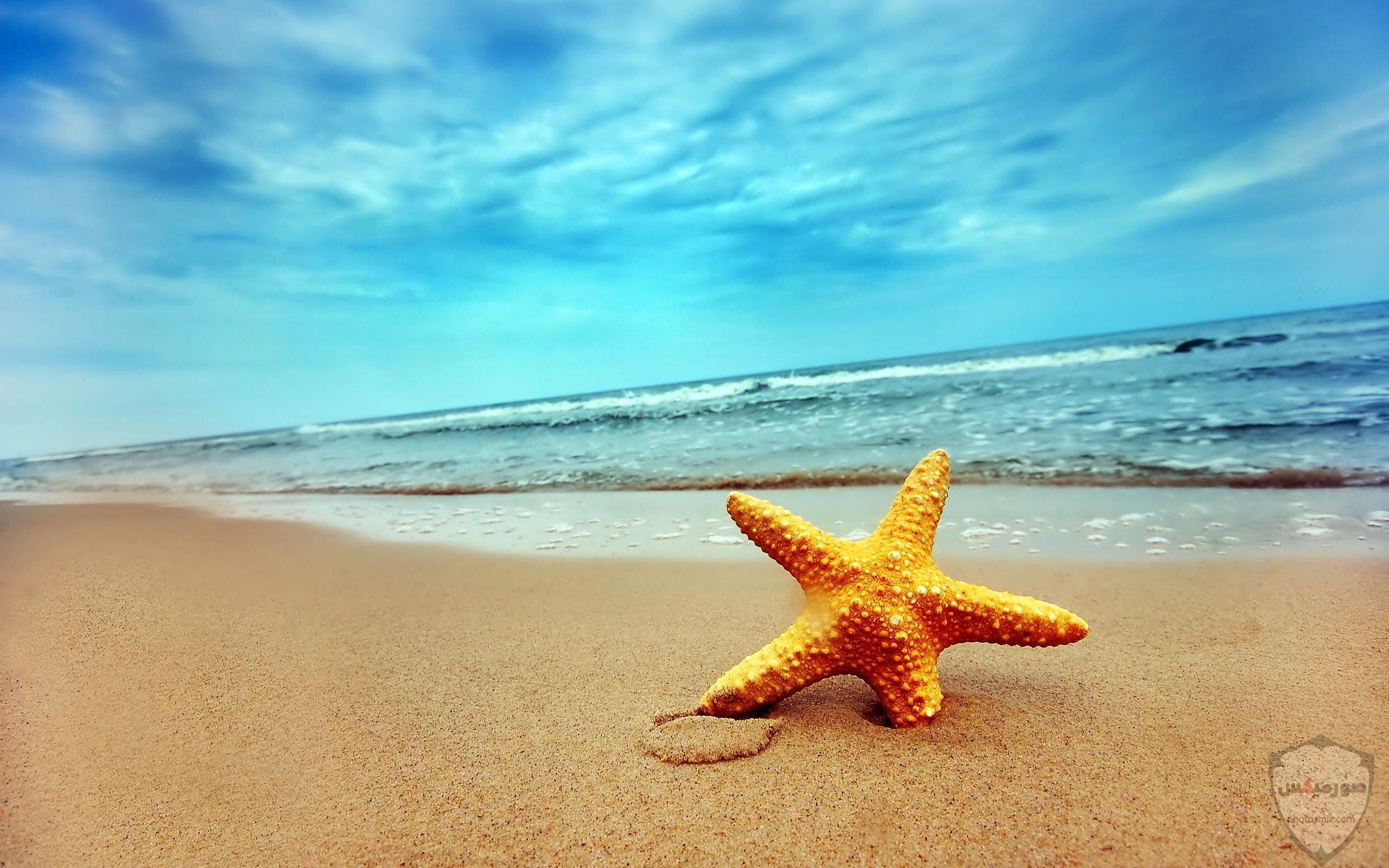 صور بحر وشاطئ صور وخلفيات بحور وشواطئ جميلة اجمل خلفيات بحار جودة عالية 15