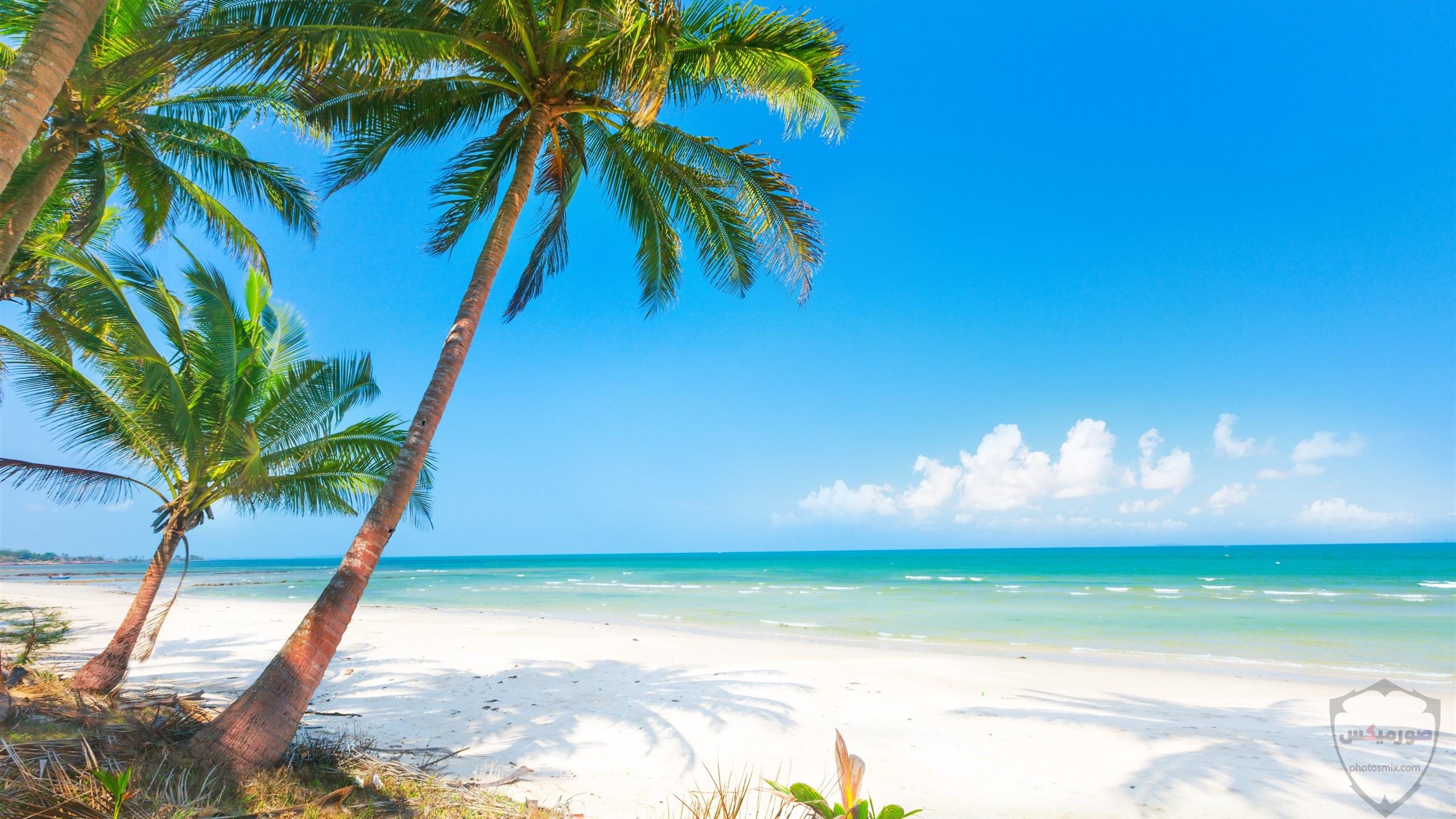 صور بحر وشاطئ صور وخلفيات بحور وشواطئ جميلة اجمل خلفيات بحار جودة عالية 24