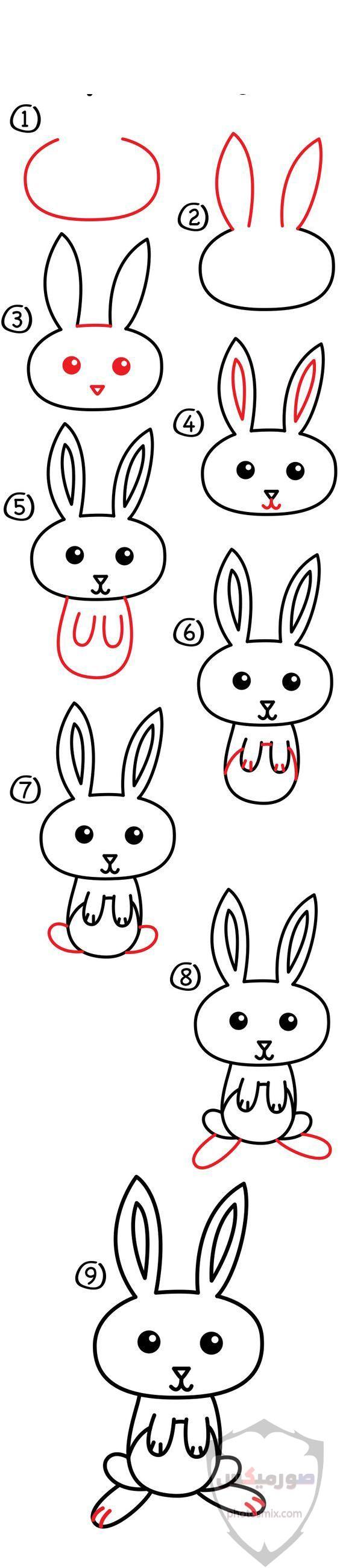صور خلفيات رمزيات ارانب كيوت صورة خلفية ارنب كيوت جدا 22