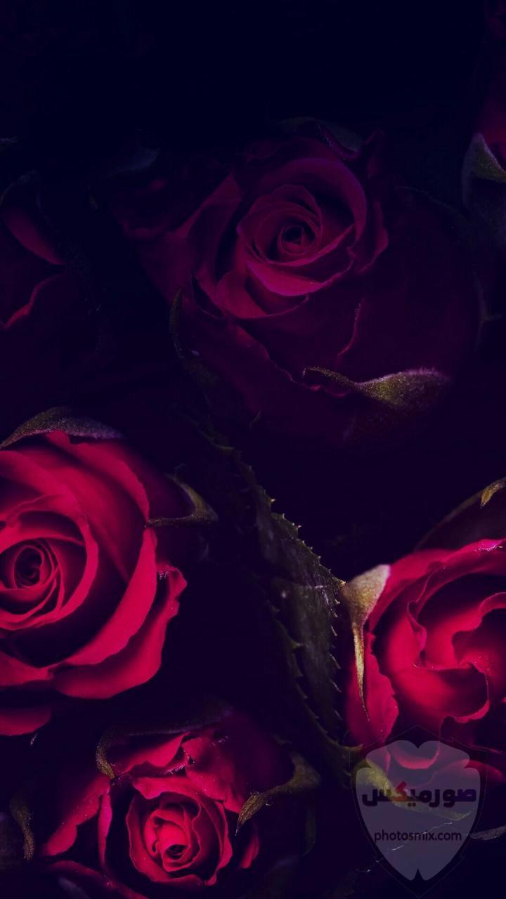 صور خلفيات كمبيوتر 2020 روعة بجودة عالية HD صور خلفيات موبايل رومانسية جميلة 2021 62