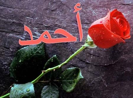 صور خلفيات معلومات اسم احمد Ahmed 33