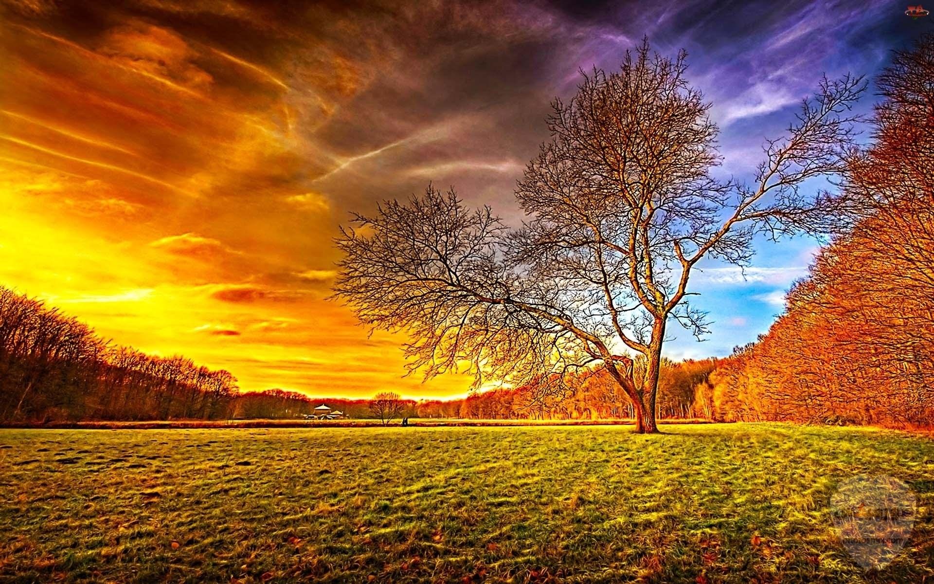 صور طبيعة جميلة صور وخلفيات الطبيعه 2020 أجمل صور للطبيعة 25