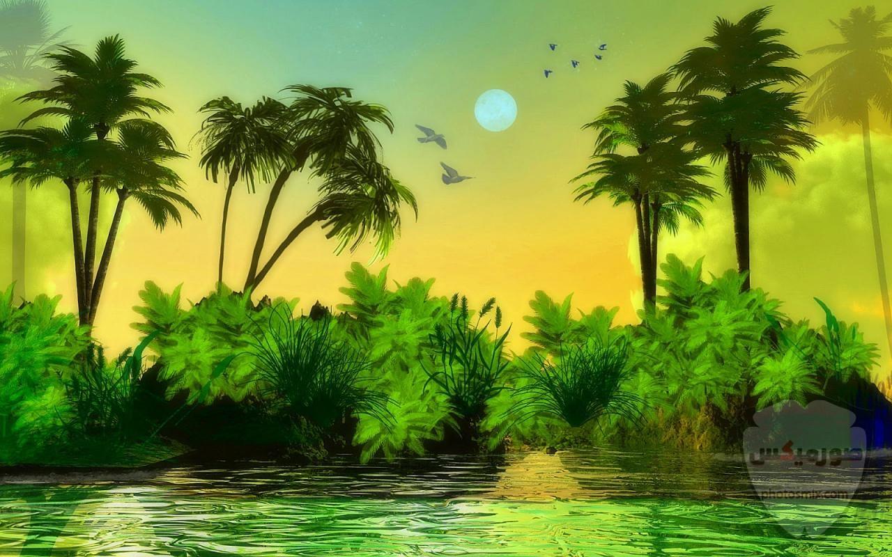 صور طبيعة خلابه 2020 اجمل صور مناظر طبيعيه جميلة جدا و افضل مناضر طبيعية لورود و اشجار و غابات جميله جدا جدا جدا 9