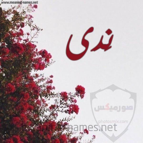 صور عن اسم محمد اجمل خلفيات لاسم محمد 9