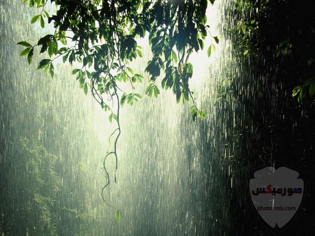 صور للمطر في الشتاء 2020 كلام مصور عن المطر والشتاء عبارات للمطر 1 1