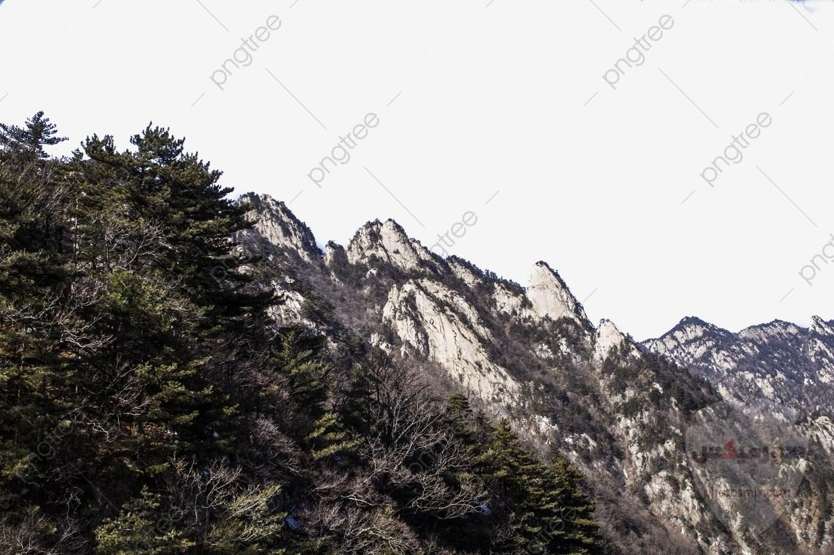 صور وخلفيات جبال وشلالات طبيعية HD خلفيات جبال خضراء وثلجية 15