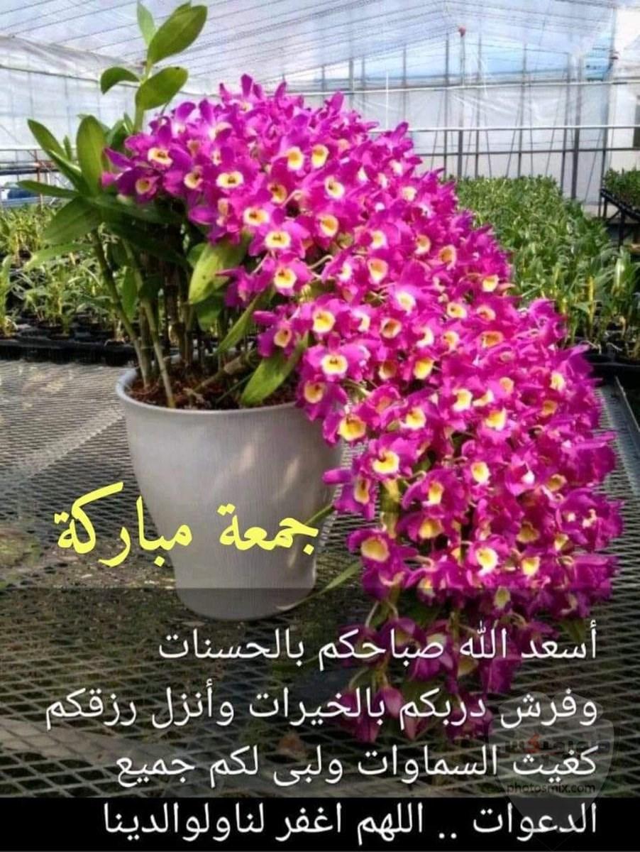 صور يوم الجمعه.صور جمعه مباركه 2020.صور تهانئ بيوم الجمعه 2020 .. 4