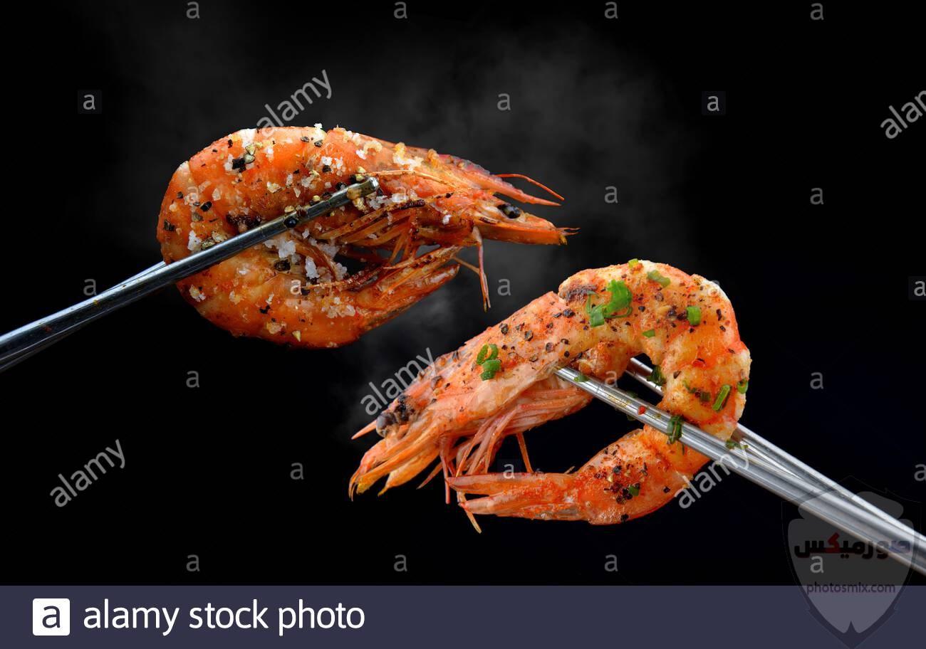 وصفات روبيان سهلة وصفات الجمبري جمبري البحر جمبري المزارع 5