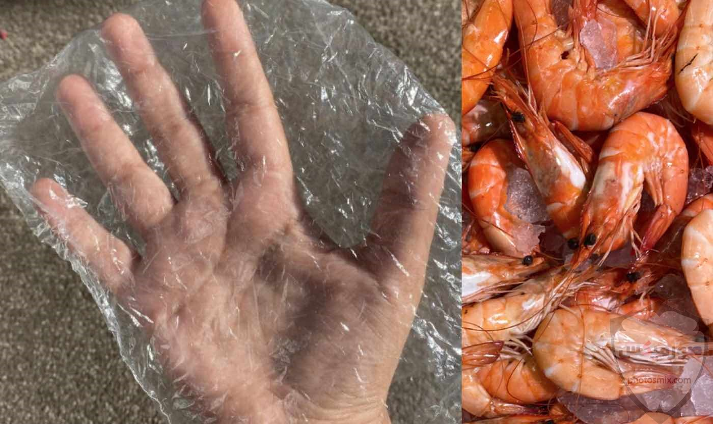 وصفات روبيان سهلة وصفات الجمبري جمبري البحر جمبري المزارع 6