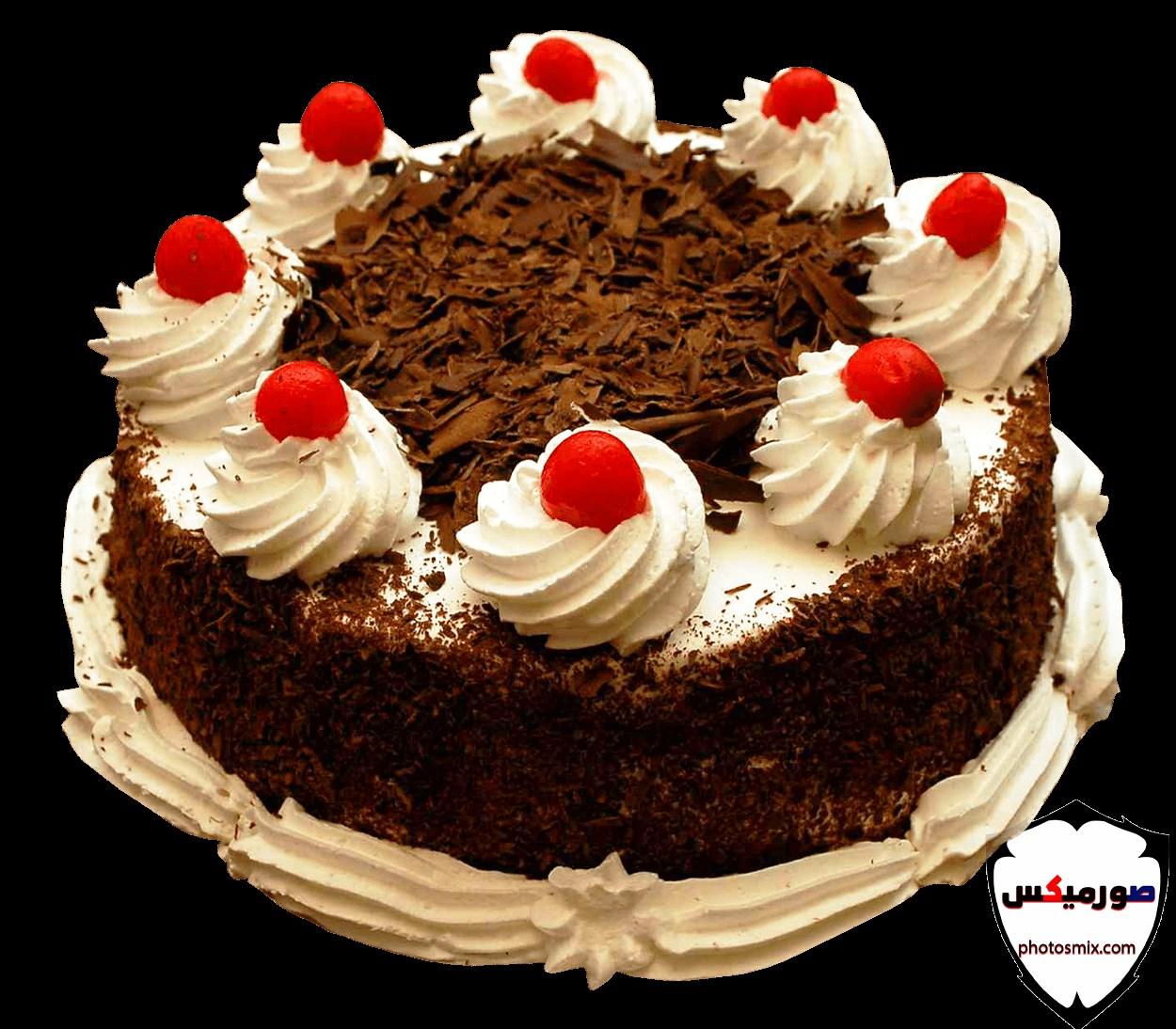 اجمل صور تورتة عيد ميلاد للاحتفال بالحبيب والصديق 11