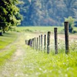 الطبيعة الخلابة أنواع الطبيعة خلفيات طبيعة طبيعة خلابة 10