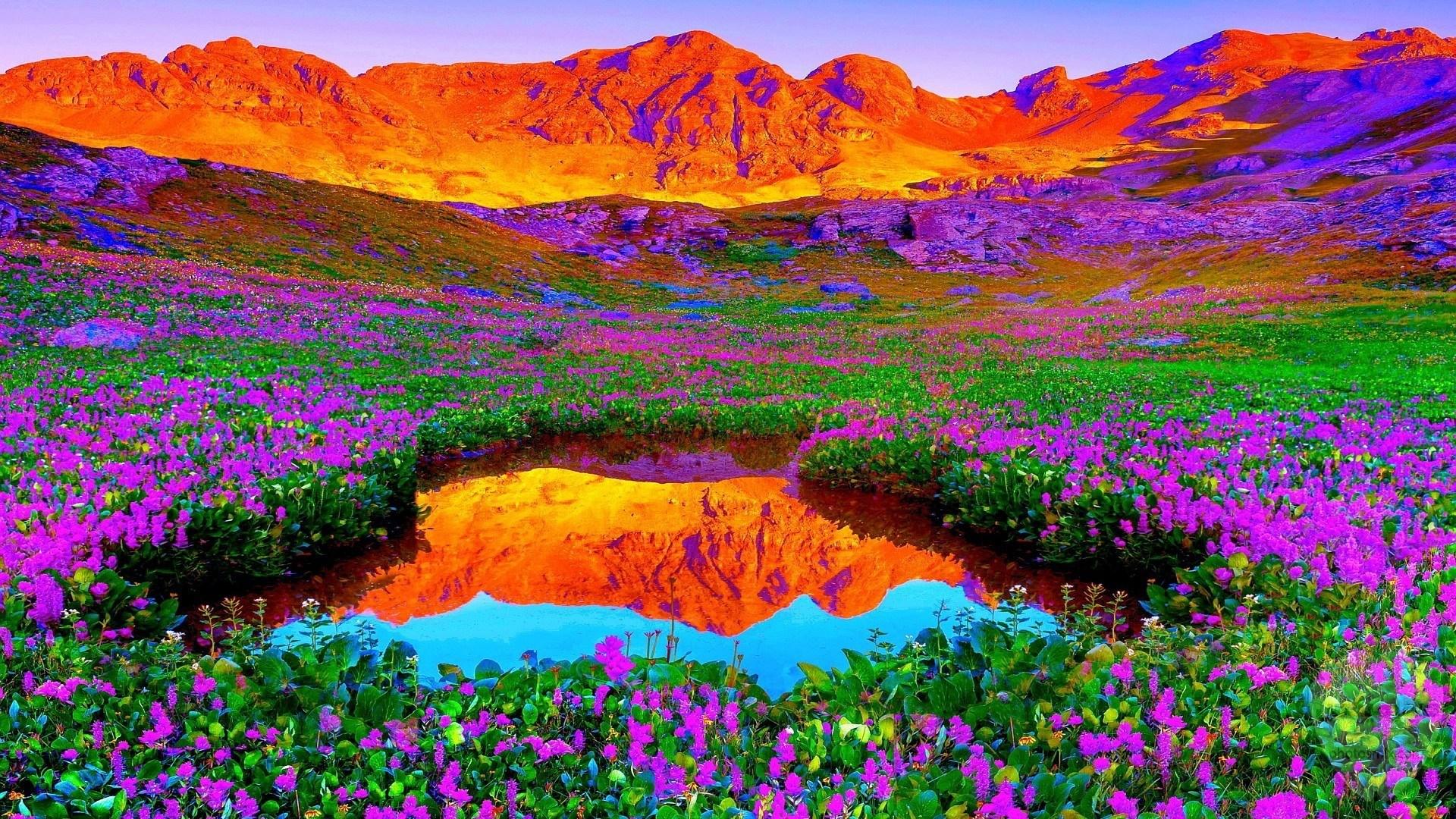 الطبيعة الخلابة أنواع الطبيعة خلفيات طبيعة طبيعة خلابة 16