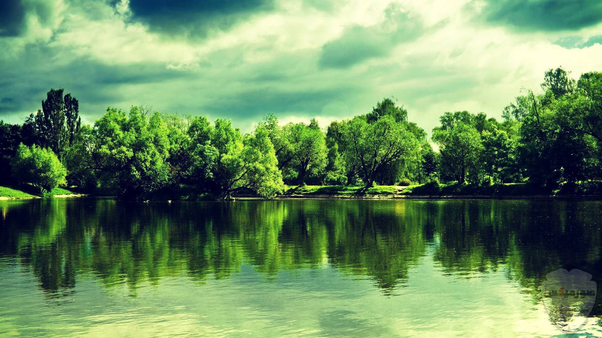 الطبيعة الخلابة أنواع الطبيعة خلفيات طبيعة طبيعة خلابة 21