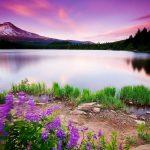 الطبيعة الخلابة أنواع الطبيعة خلفيات طبيعة طبيعة خلابة 7