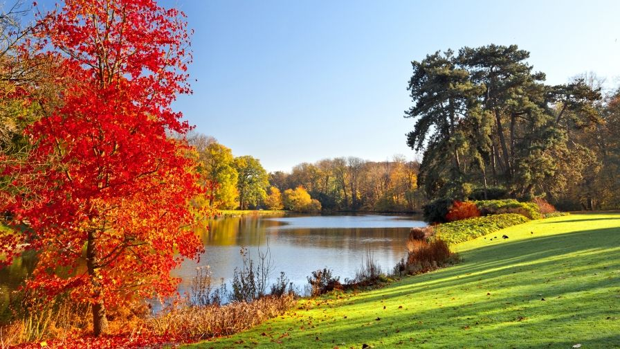 خلفيات طبيعية جميلة خليفات مياه وشلالات خلفيات خضراء 3