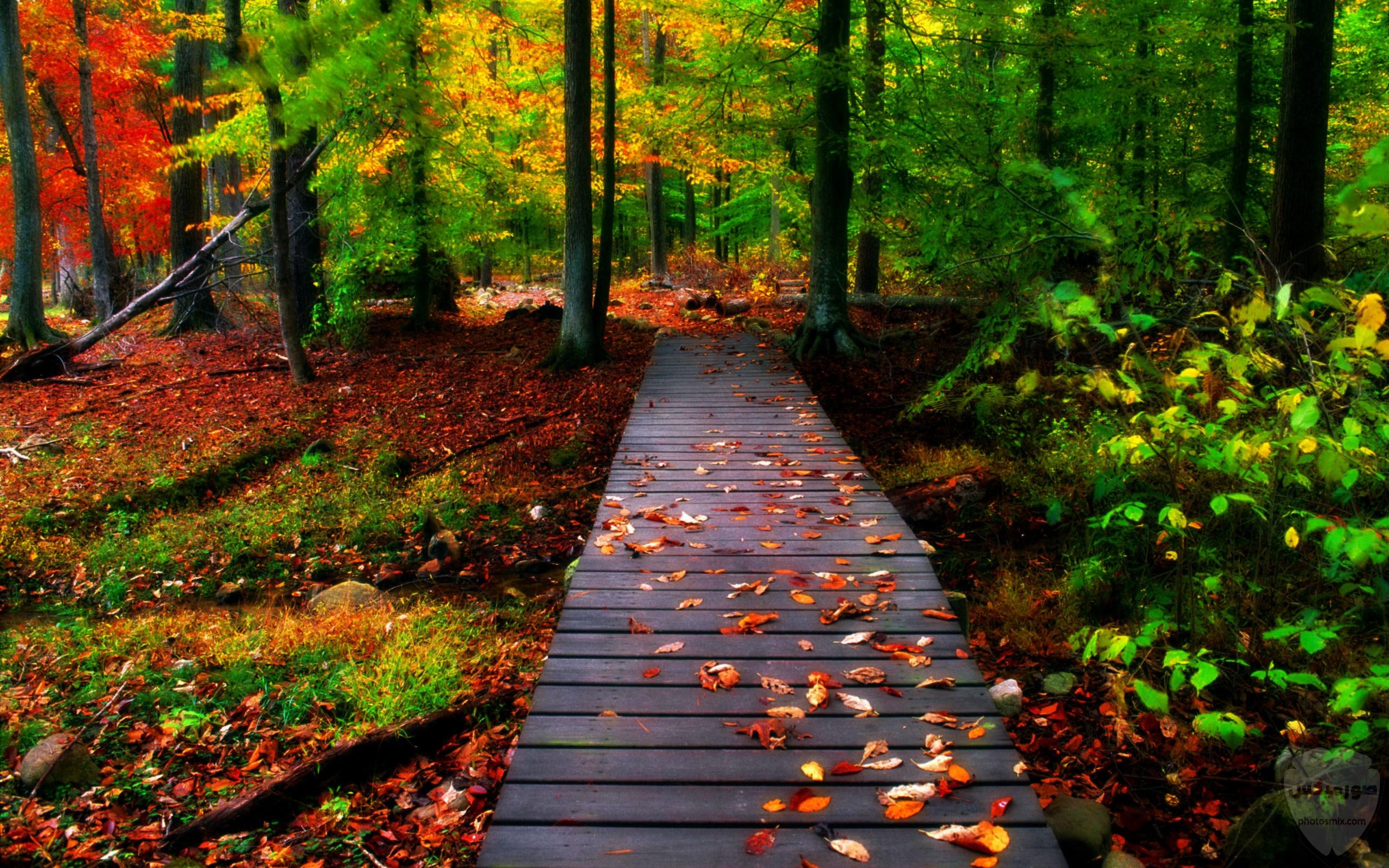 صور طبيعة جميلة صور طبيعيه خلابه 10