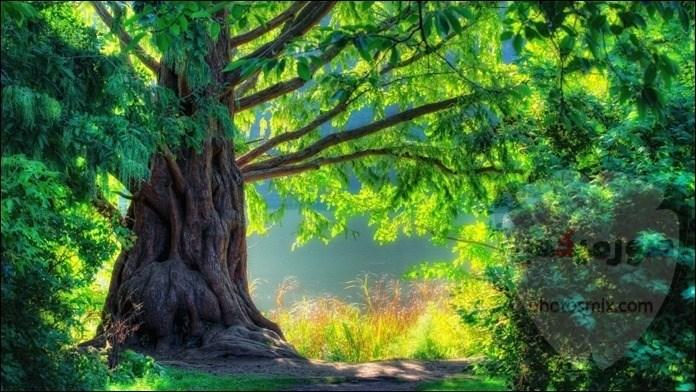صور طبيعة جميلة صور طبيعيه خلابه 3