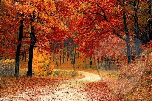 صور طبيعة جميلة صور طبيعيه خلابه 7