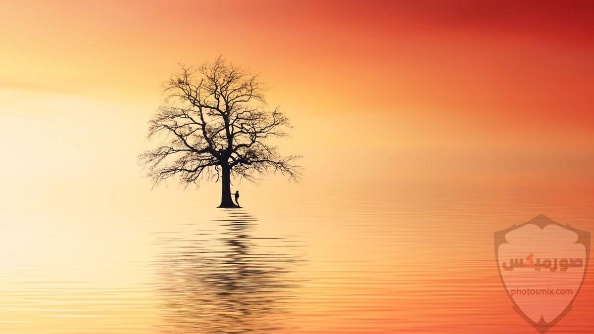 صور طبيعة جميلة صور طبيعيه خلابه 9