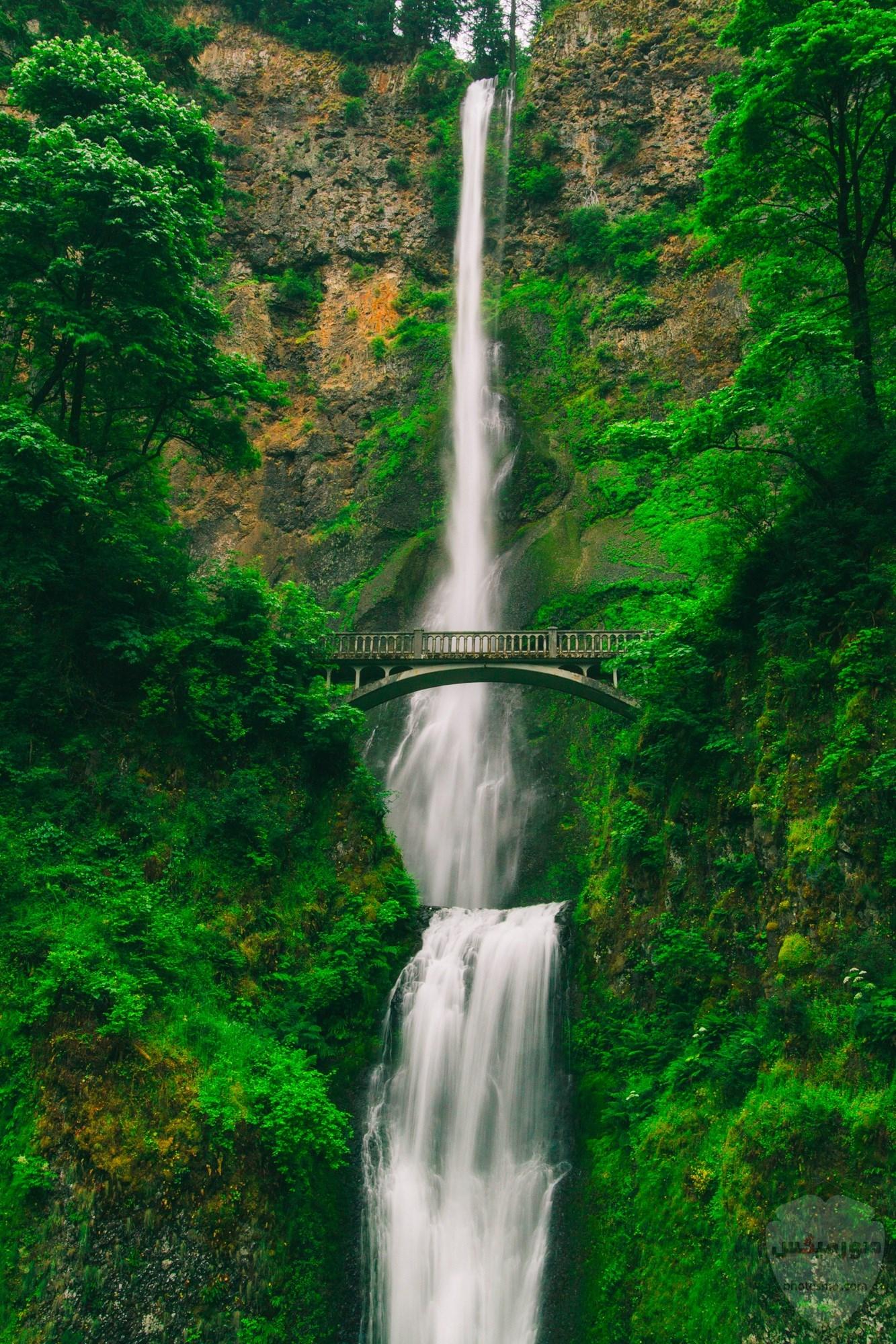 صور طبيعية خلابة أجمل صور للطبيعة صور من الطبيعة الحية 2