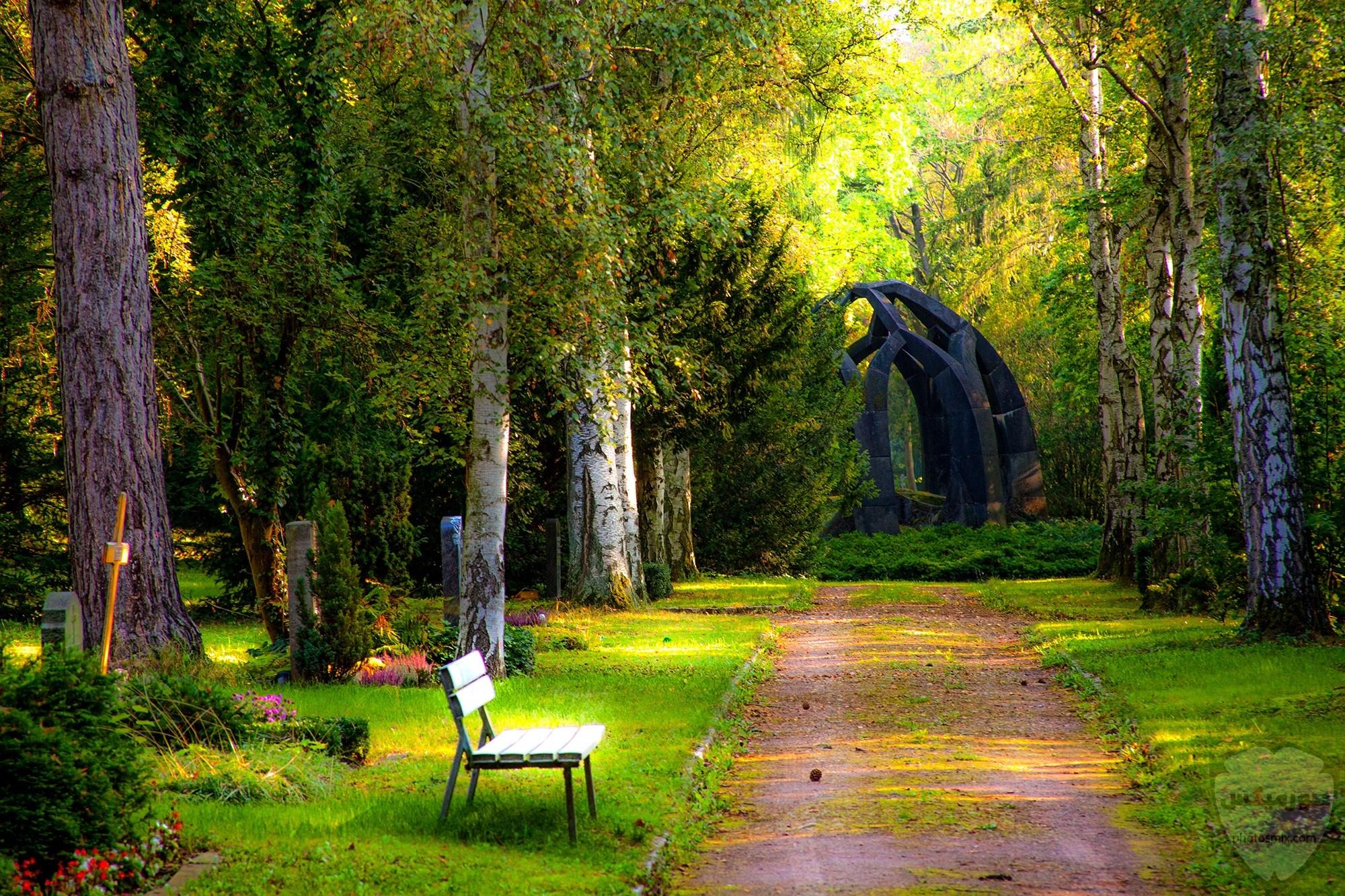 صور طبيعية خلابة أجمل صور للطبيعة صور من الطبيعة الحية 3