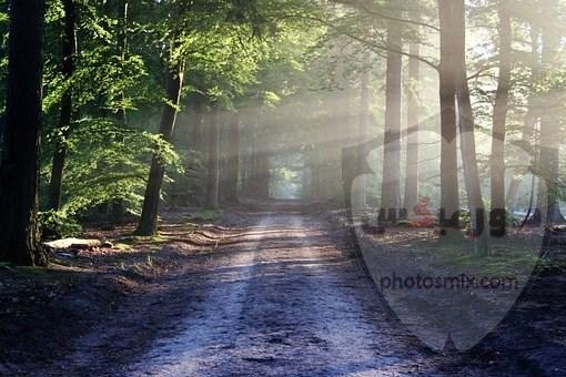 صور طبيعية خلابة أجمل صور للطبيعة صور من الطبيعة الحية 6