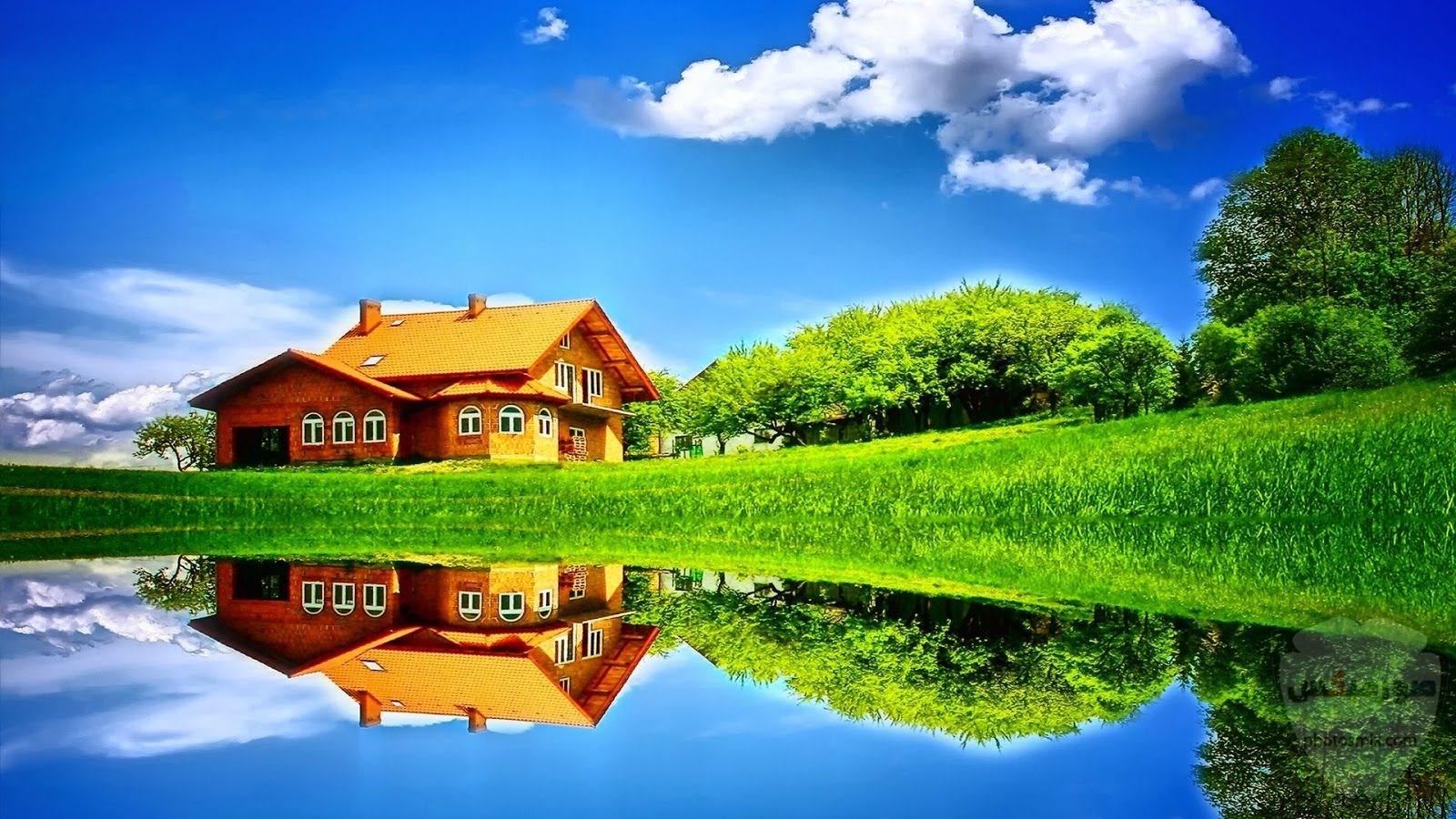 مكونات الطبيعة جمال الطبيعة فوائد الطبيعة صورمن الطبيعة 1