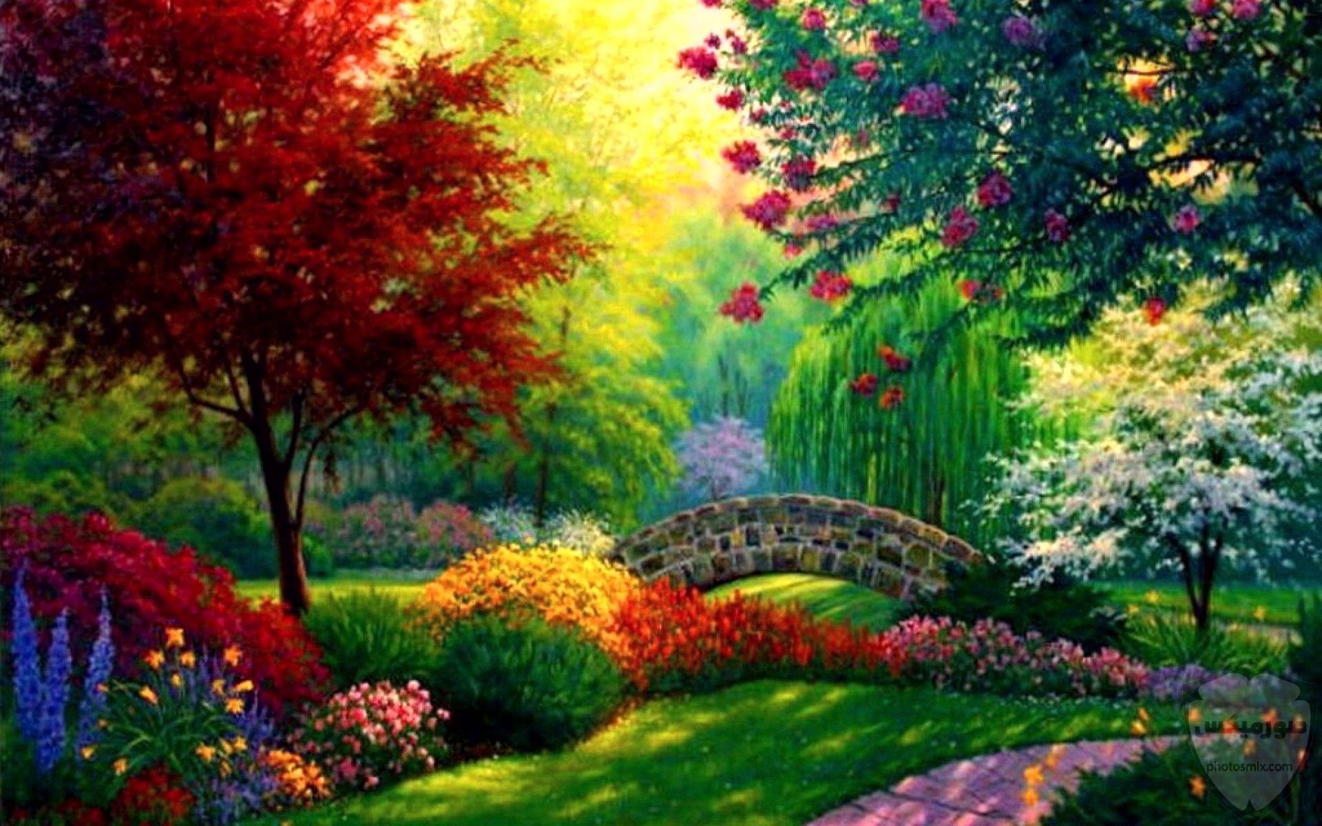 مكونات الطبيعة جمال الطبيعة فوائد الطبيعة صورمن الطبيعة 10