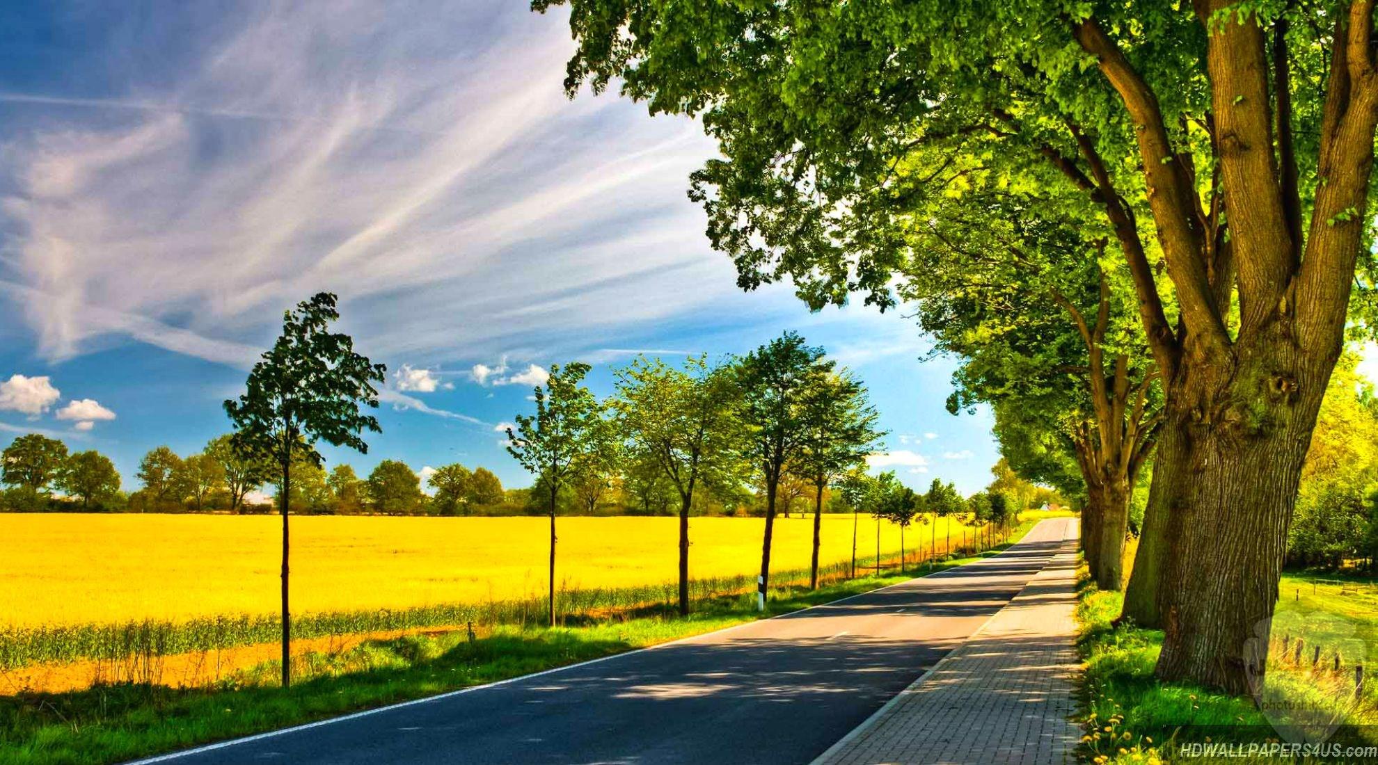 مكونات الطبيعة جمال الطبيعة فوائد الطبيعة صورمن الطبيعة 9