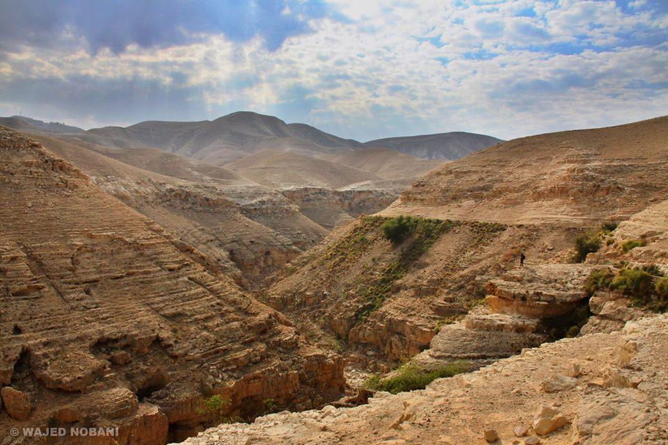 اجمل الصور عن فلسطين 12