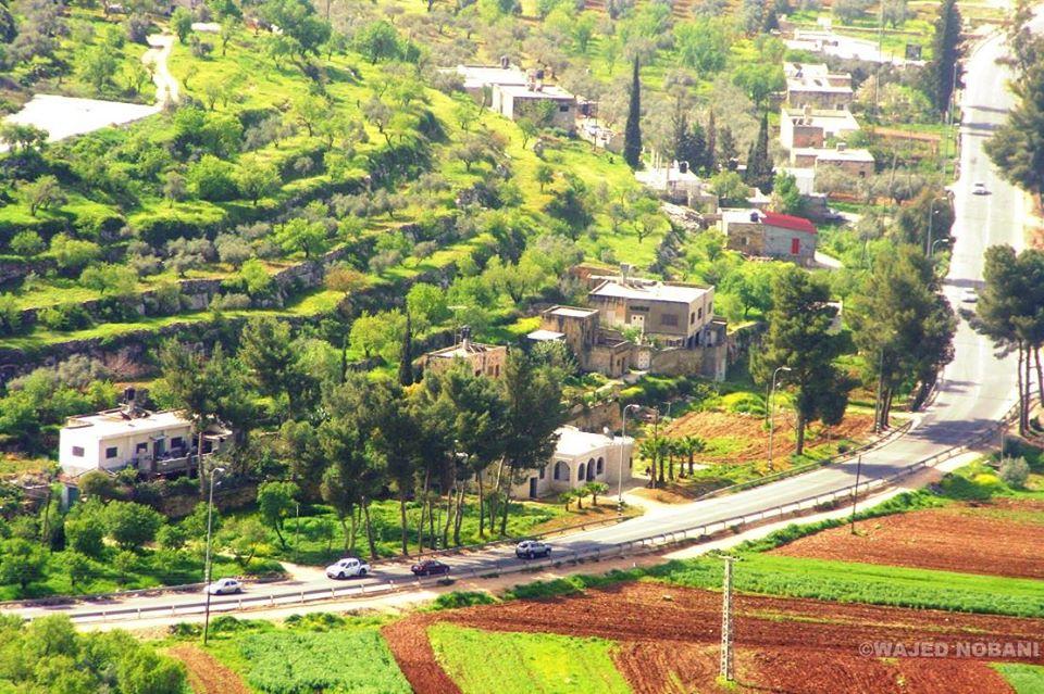 اجمل الصور عن فلسطين 3