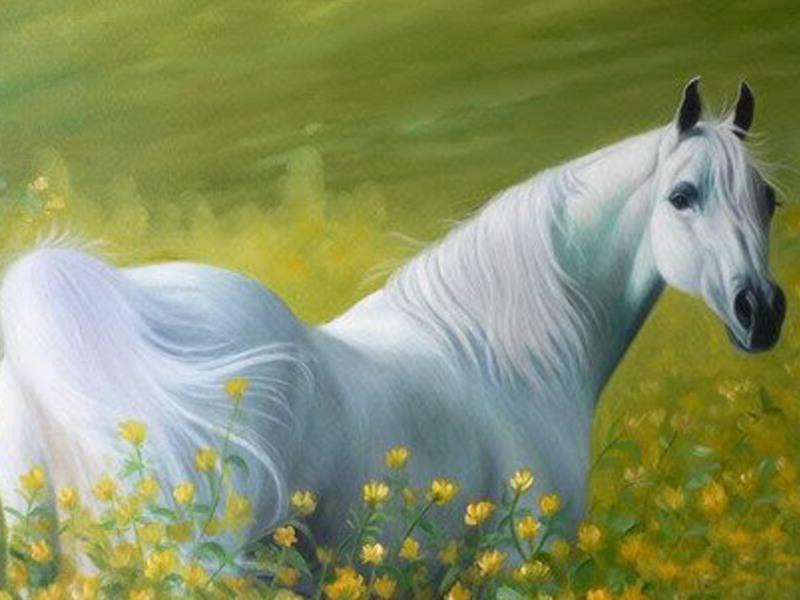 حصان ابيض 1