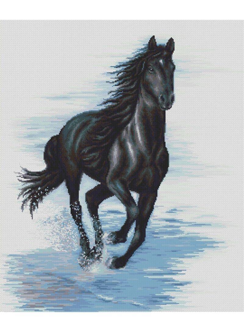 حصان اسود 55