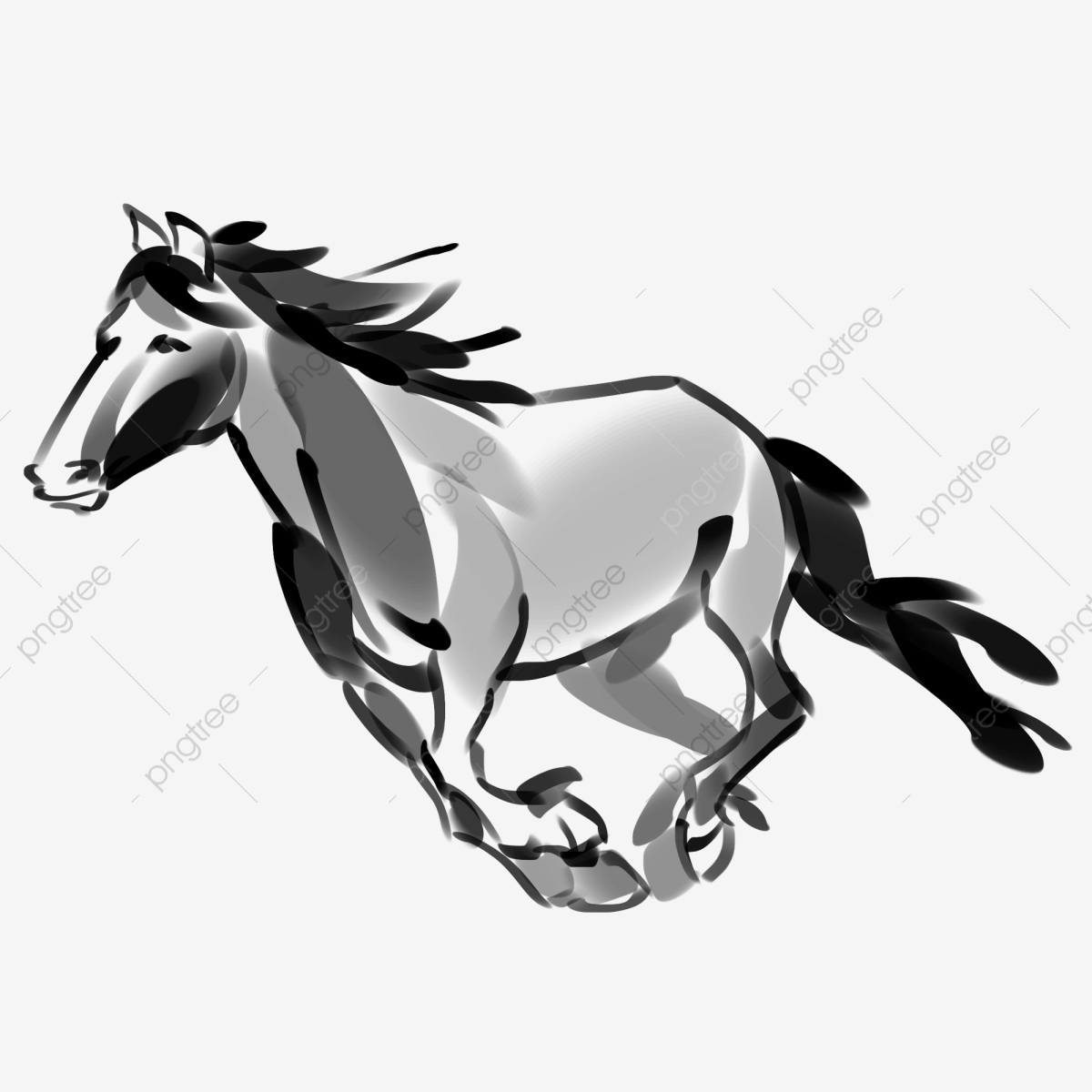 حصان اسود 57