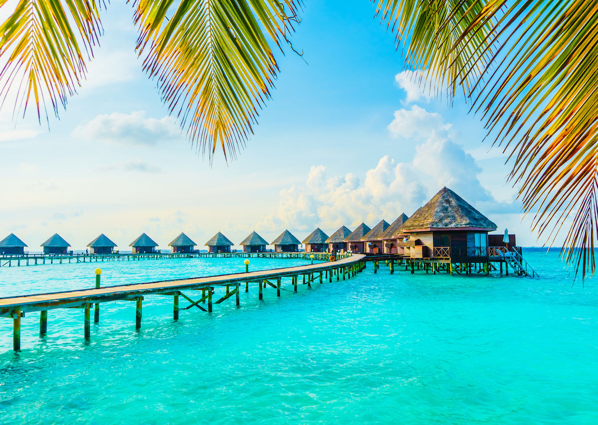 صور جزر المالديف 11