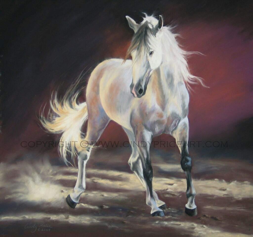 صور حصان 1